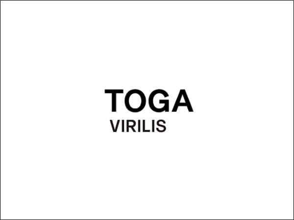 TOGA(トーガ)ってどんなブランド?8つの展開ラインの違いや歴史について