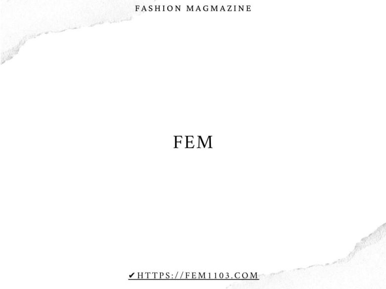 ■What's FEM?